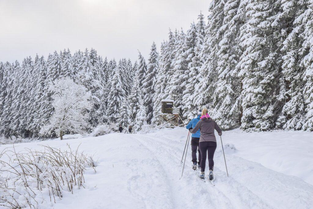 olsztyn narty biegowe